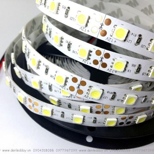 Đèn led dây dán 12V cuộn 5m đơn màu