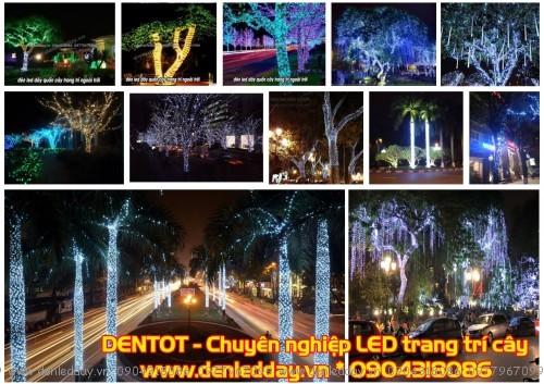 Đèn LED quấn cây, trang trí cây lung linh