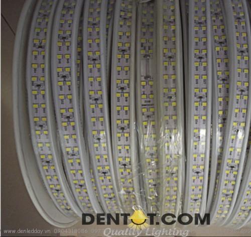 cuộn đèn ed day 2835 mạch đôi màu trắng