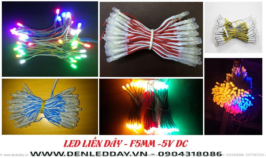 LED liền dây