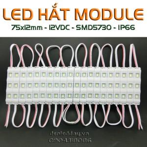 LED hắt module 3 bóng chống nước cao cấp