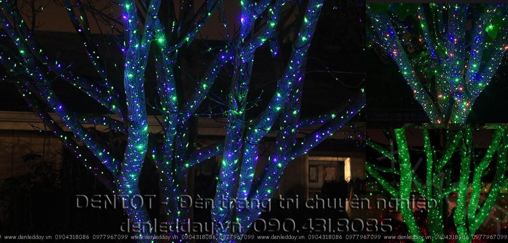 Đèn laser chiếu trang trí cây