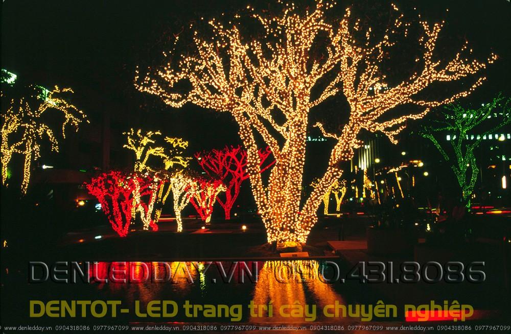 LED f5 màu Vàng đậm hoặc các màu đỏ, xanh trang trí ngoài trời có độ làn tòa ánh sáng không cao