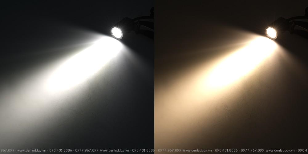 Rọi ray LED COB có ánh sáng Trắng & ánh sáng Vàng ấm