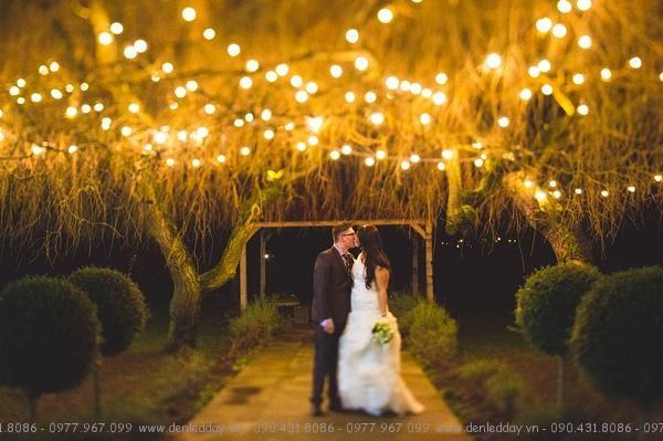 Dây đèn thả trang trí tiệc cưới, sinh nhật ngoài trời