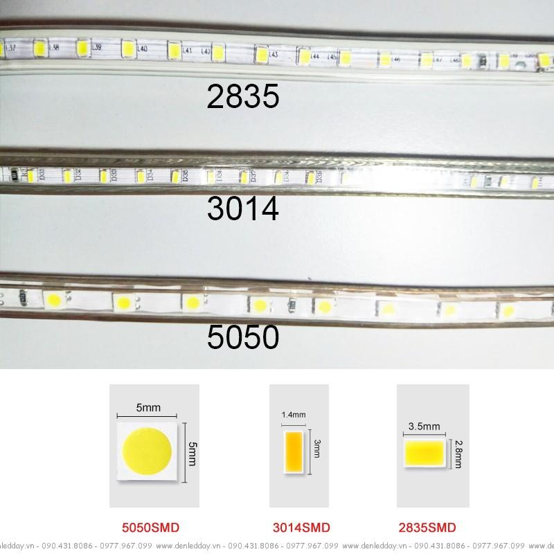 Dây led DT2835-100D