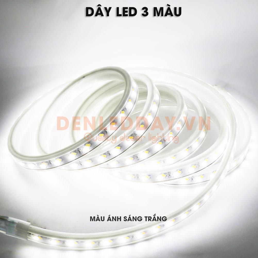 Đèn led dây 3 màu 5730 120D