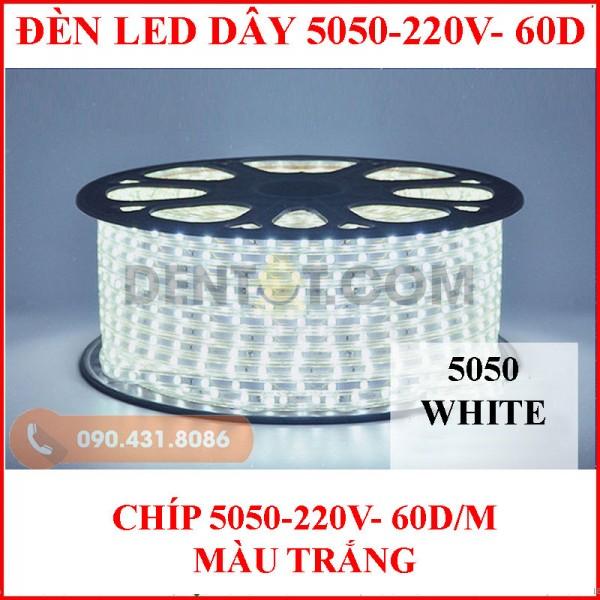 Đèn led dây 5050 loại mạch bé, màu trắng