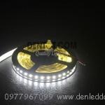Đèn led dây dán 2835-12V-120L/M – IP33 , cuôn 5m Single PCB-Trắng