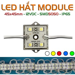 LED hắt module vuông 4 bóng 5050