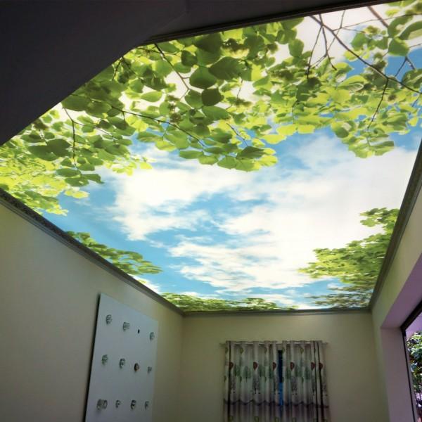 LED thanh hắt sáng trần căng
