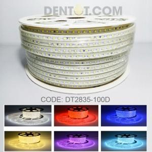 Dây đèn led chống mưa DT2835-100D