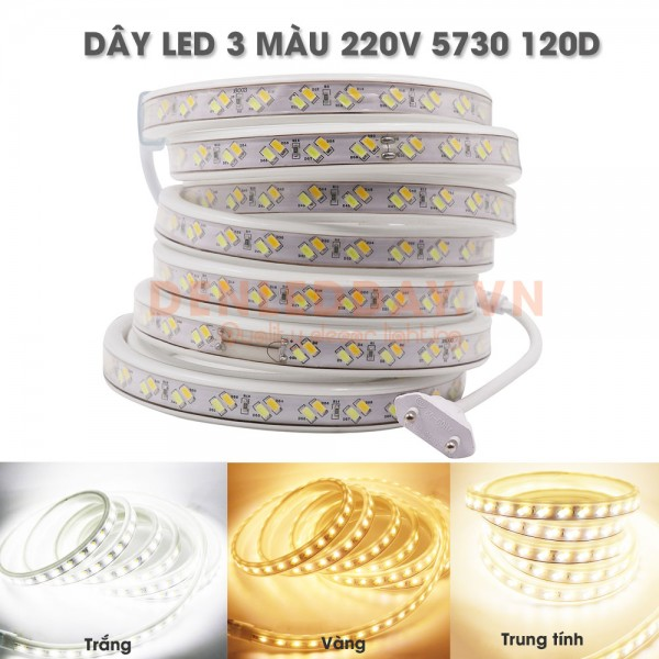 Dây LED 3 Màu 5730-120D